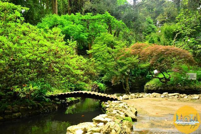 Batum Botanik Bahçe
